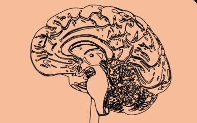 Peut-on diagnostiquer la dyslexie par l'IRM fonctionnelle ?