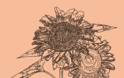 Peut-on soigner la dyslexie avec les fleurs de Bach ?