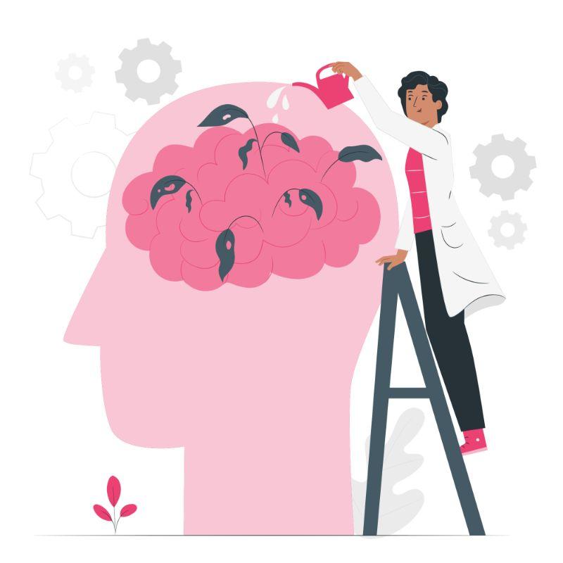 cerveau et QI chez l'enfant dyslexique